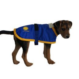 caae067ca81288 Souvenir Shop Arosa Hunde Mantel Blau Aroser Souvenirs Geschenke und  Andenken