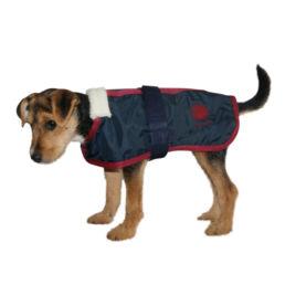 Souvenir Shop Arosa Hunde Mantel Rot Aroser Souvenirs Geschenke und Andenken