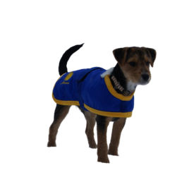 Souvenir Shop Arosa Hunde Mantel Blau Aroser Souvenirs Geschenke und Andenken